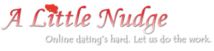 A Little Nudge - Online dating's hard. Let us do the work.